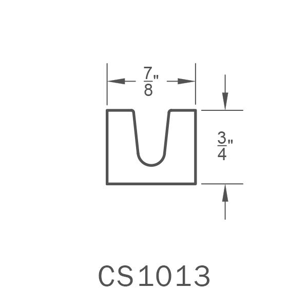 CS1013.png