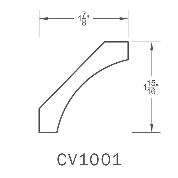 CV1001.png