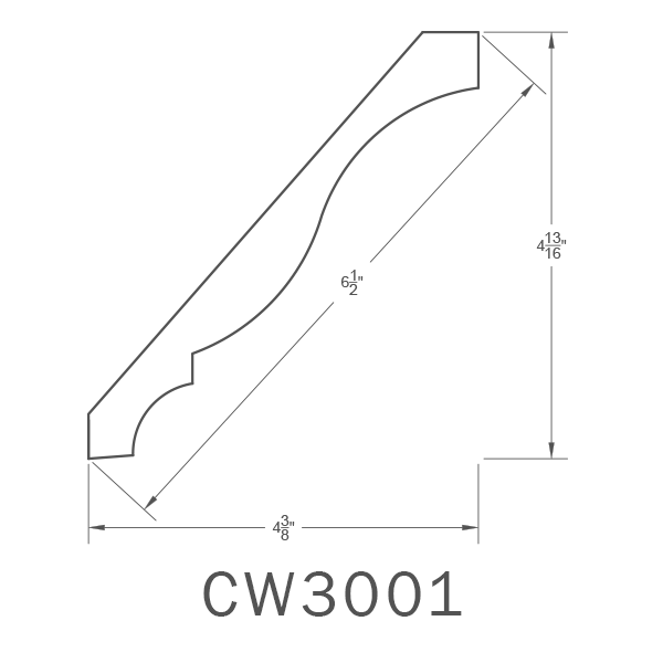 CW3001.png