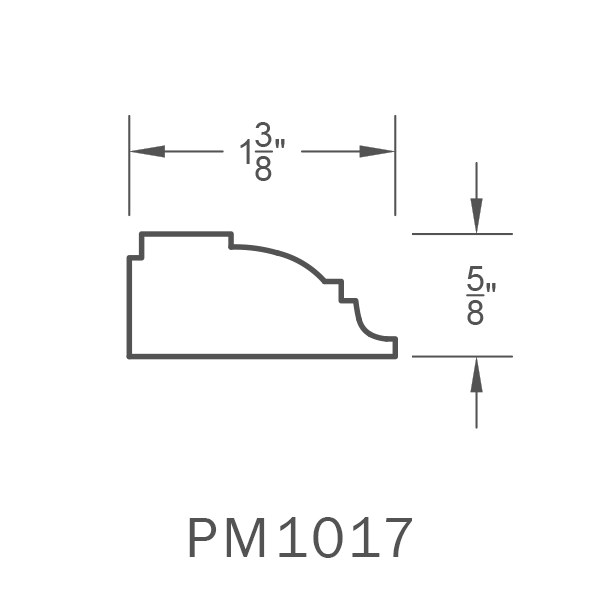 PM1017.png