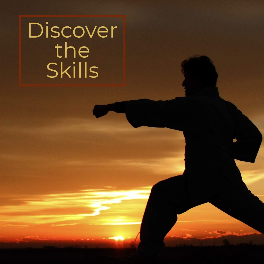 Discover the Skills
