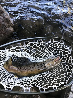 dry fly butter