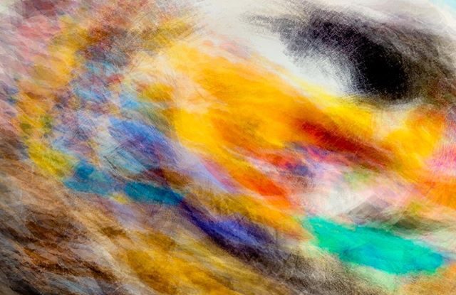 Eye of the Storm.  #fineart  #iphone #limitededition #abstractart #fuckingwithcolor #linccornellstudio. Linccornell.com