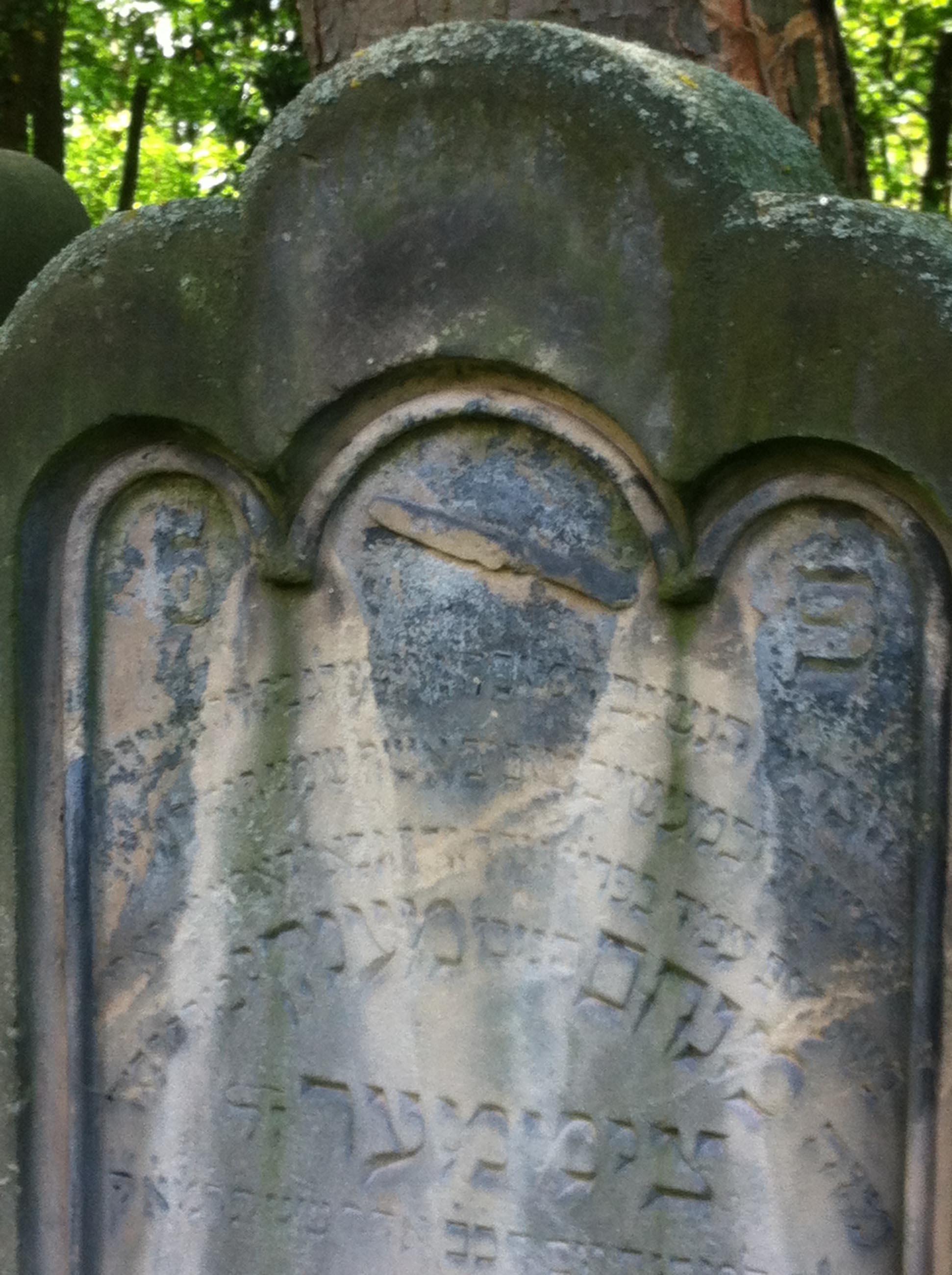 Fürth, Jüdischer Friedhof. Fotos: Frank Drechsler