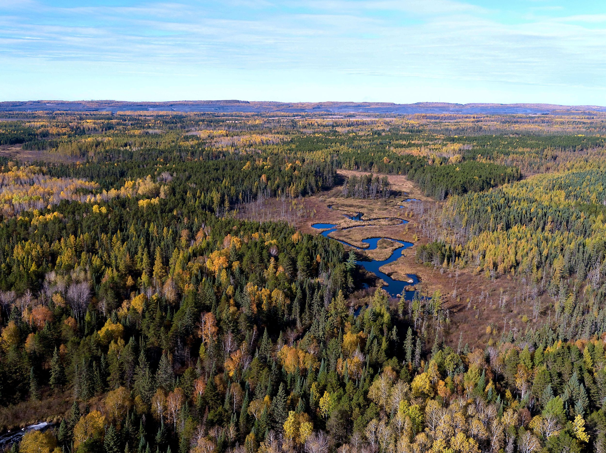 The Partridge River, near the proposed PolyMet Mine site. Photo by Rob Levine.