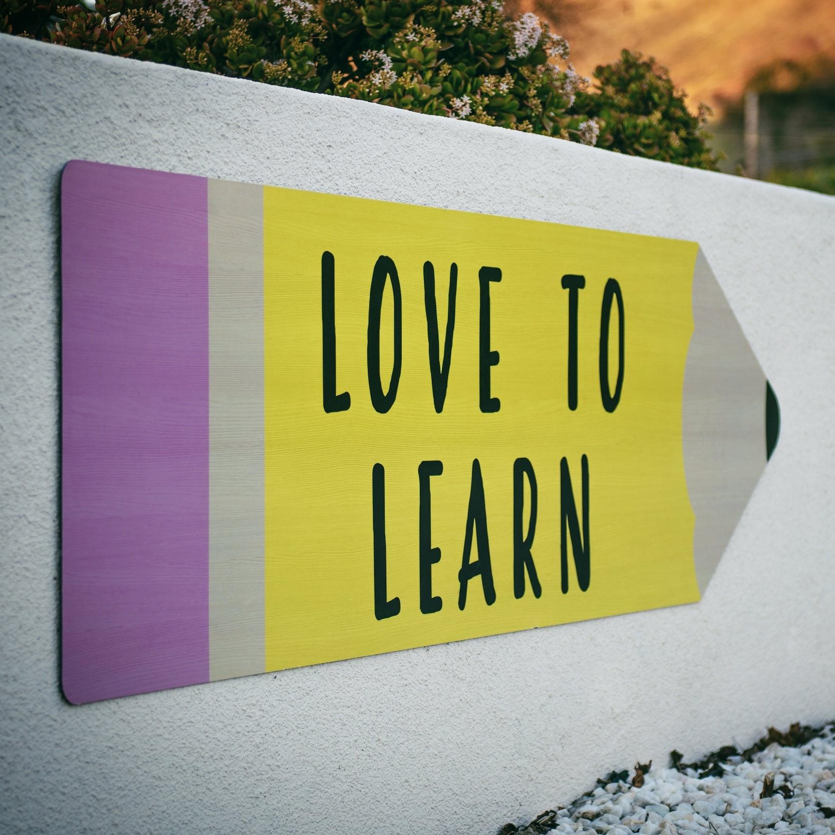 Love+to+learn+tim-mossholder-1265371-unsplash.jpg
