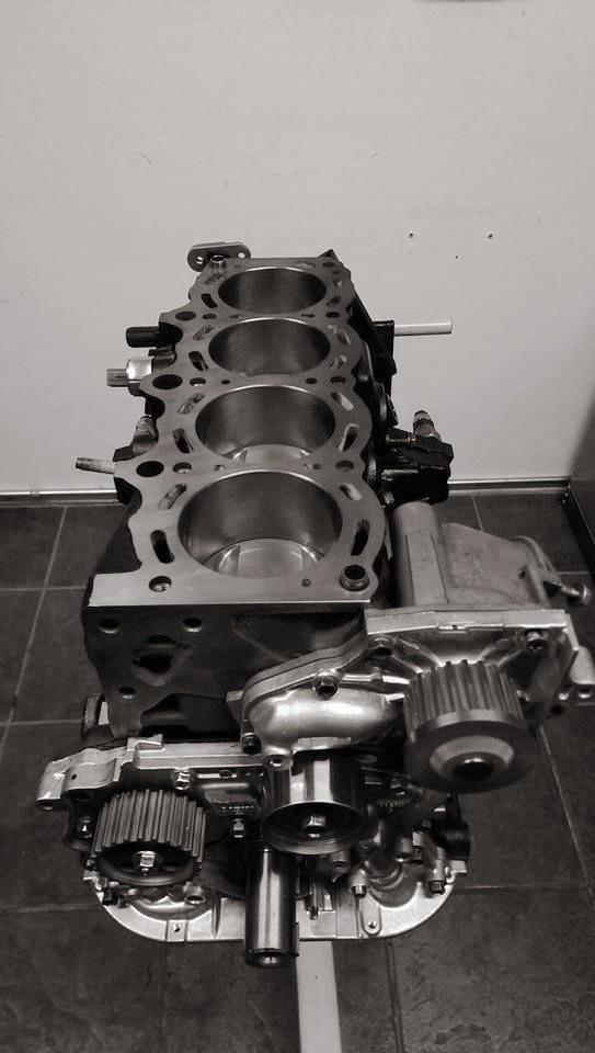 3sgte engine build.jpg