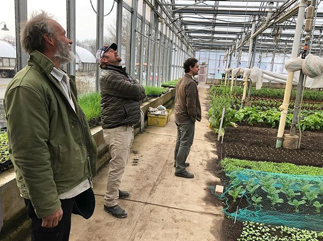 Our team visiting the greenhouse at Stone Barns—so much life! #breathedeepfarm #stonebarns #greens