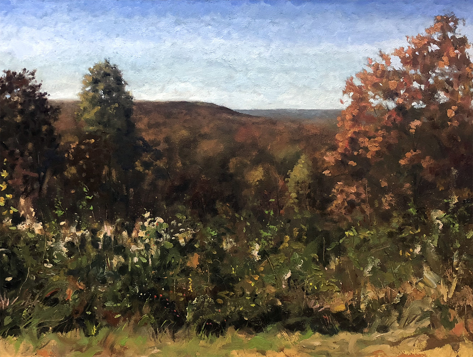 Brown County Overlooking Bean Blossom - Justin VIning (for web).jpg