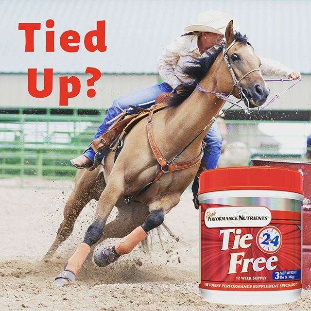 Don't Let Muscle Soreness and Tying Up Slow Your Horse Down.  Tie Free is a Cost Effective Solution and Guaranteed for your Satisfaction.  Tie Free Works!
