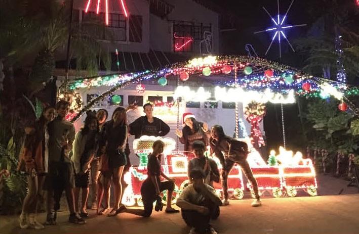 4Life Christmas Lights.jpg