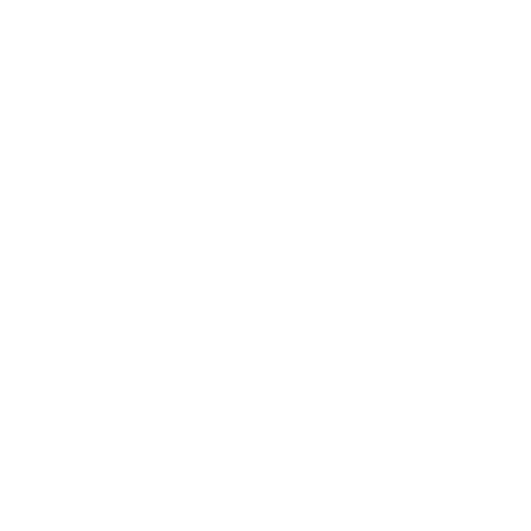 100 Years Legacy.png