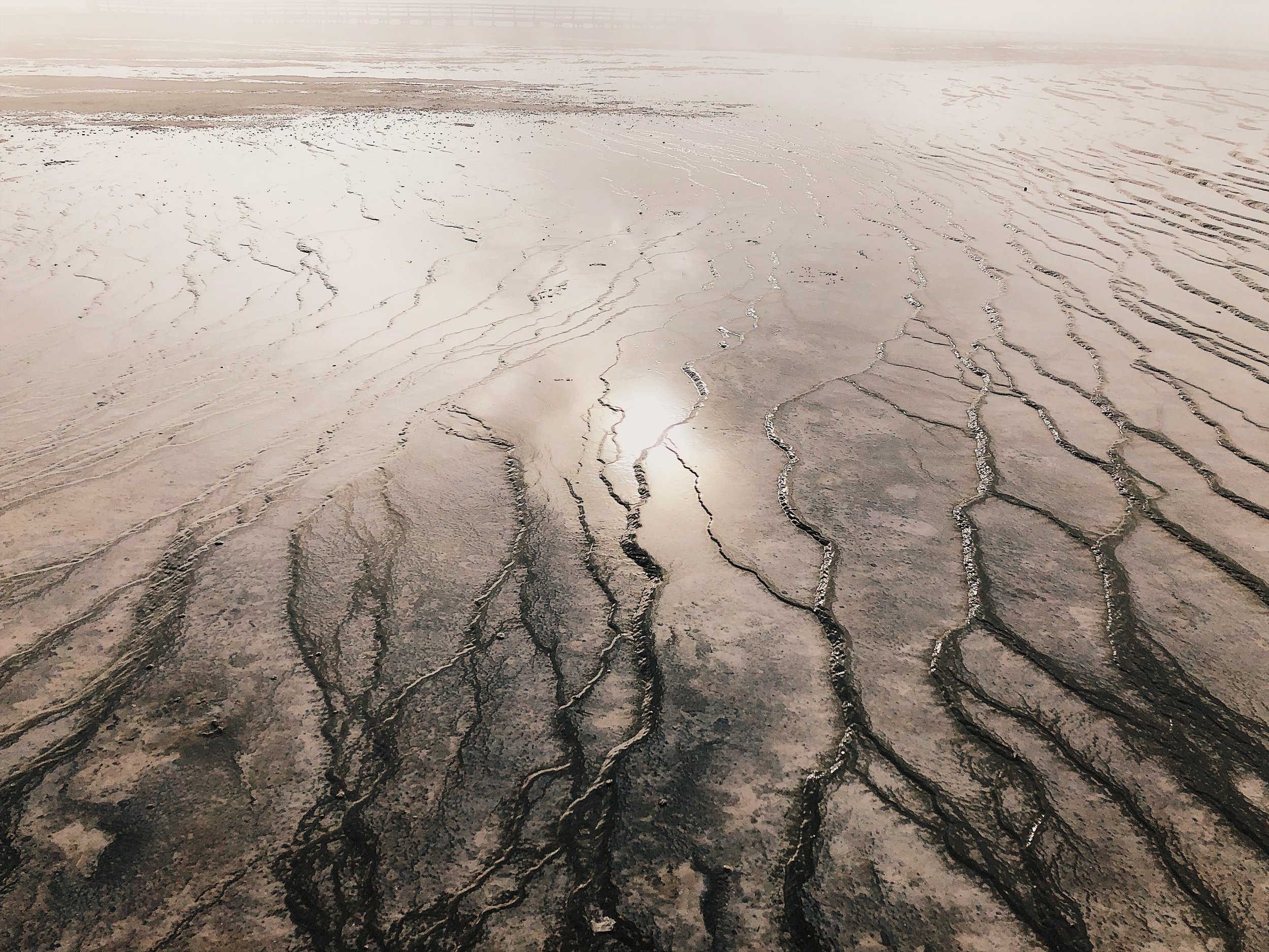 Exploring the veins of The Grand Prismatic Spring