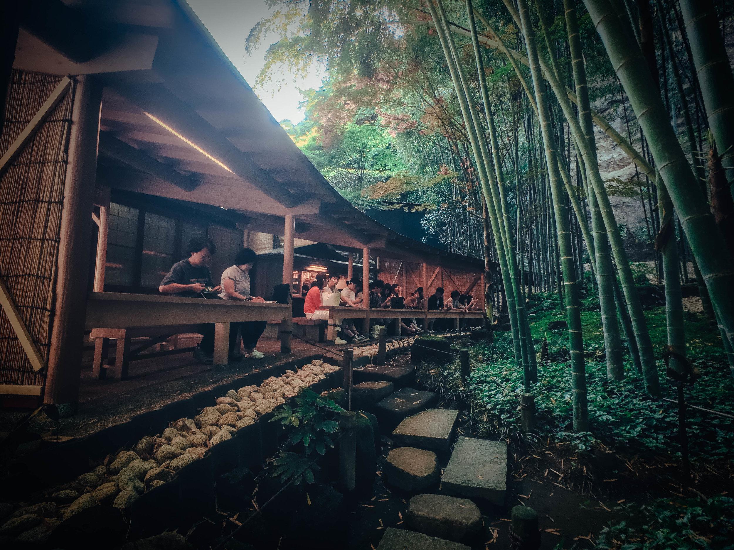 kamakura-forest-tea.jpg
