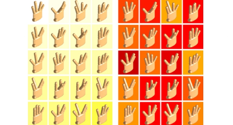 Hand_Configurations_Cropped.jpg