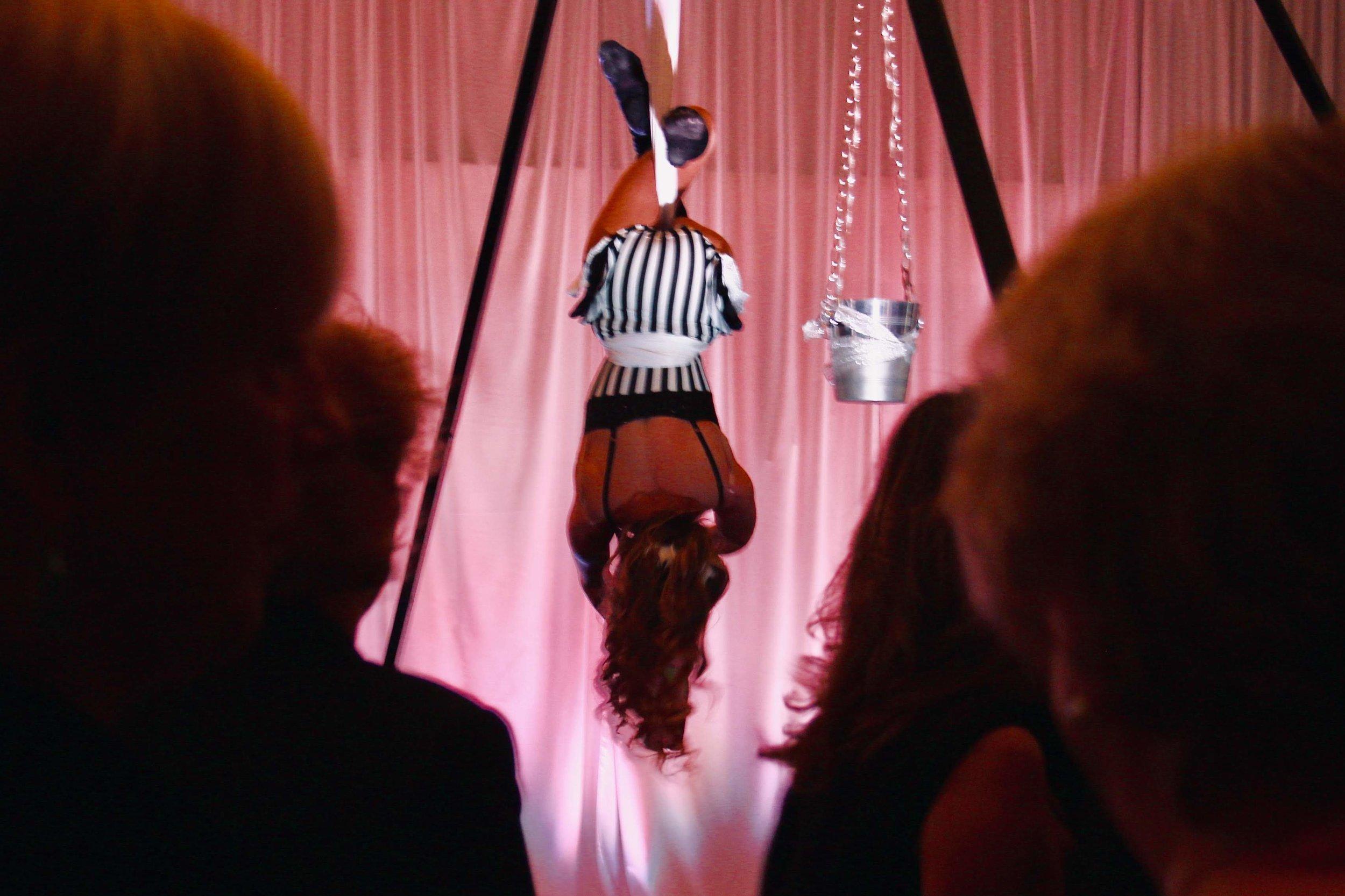 Class Descriptions — Premier Cirque