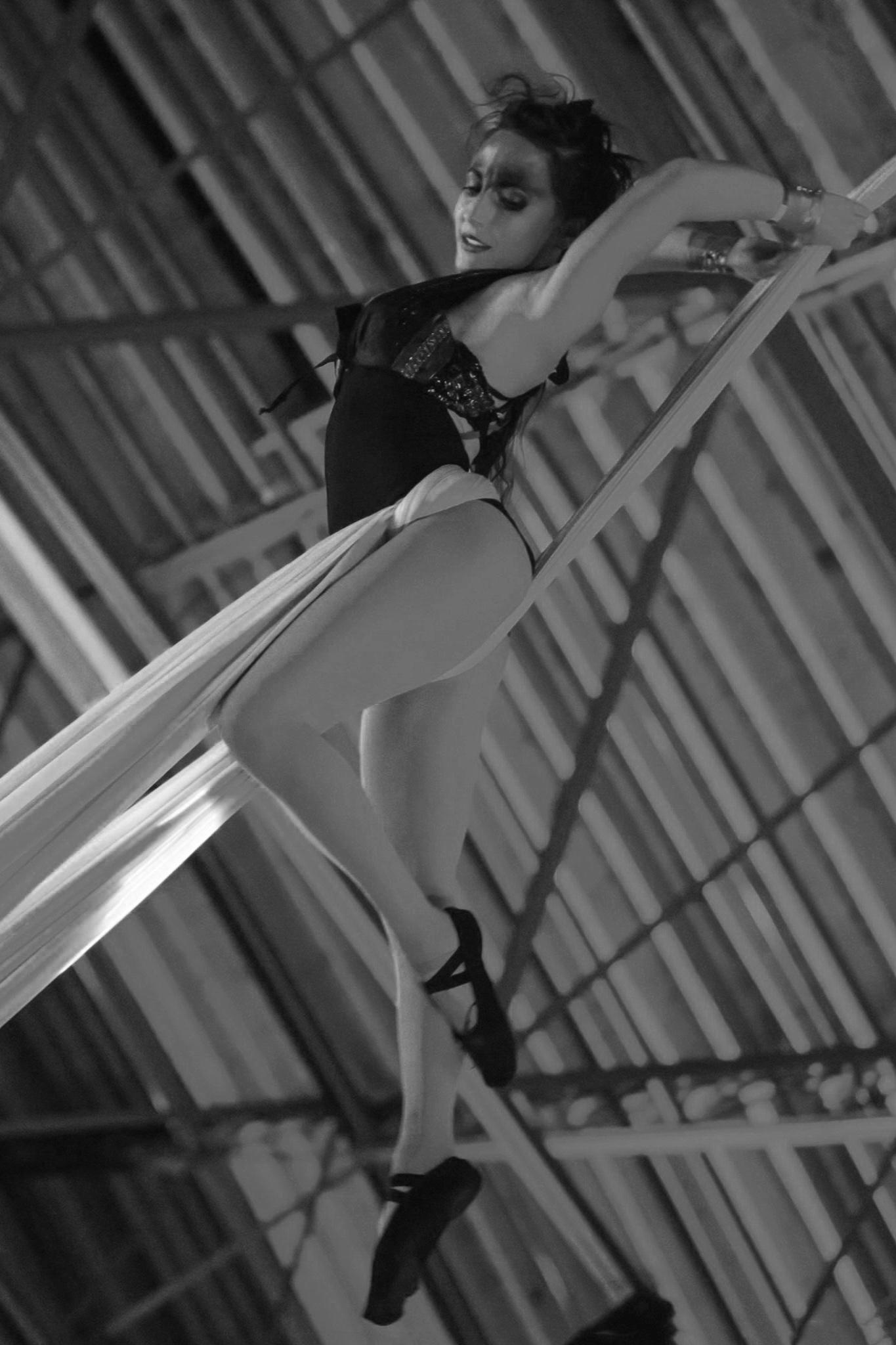 Premier_Cirque_Brittany