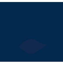 SEND+Boston resize.png