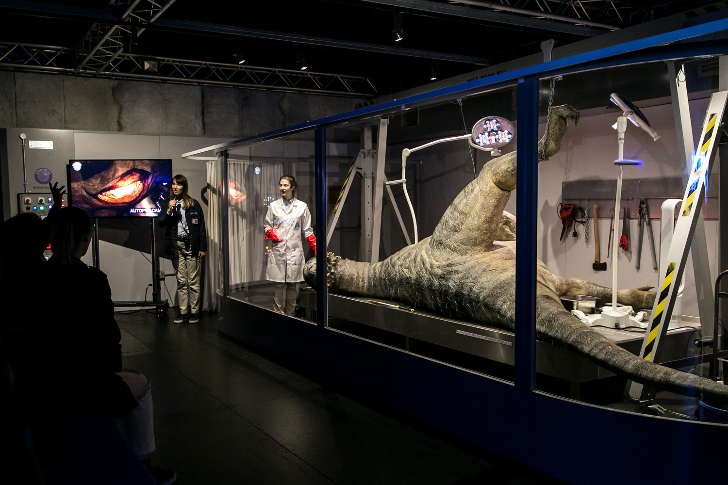 FRD provided project planning, design of multimedia platforms, and fabrication and installation. In order to reinforce the accuracy and authenticity of the experience, in-depth palaeontological research was delivered in conjunction with immersive computer-generated multimedia, dynamic soundscapes and lighting elements, and state-of-the-art animatronics.