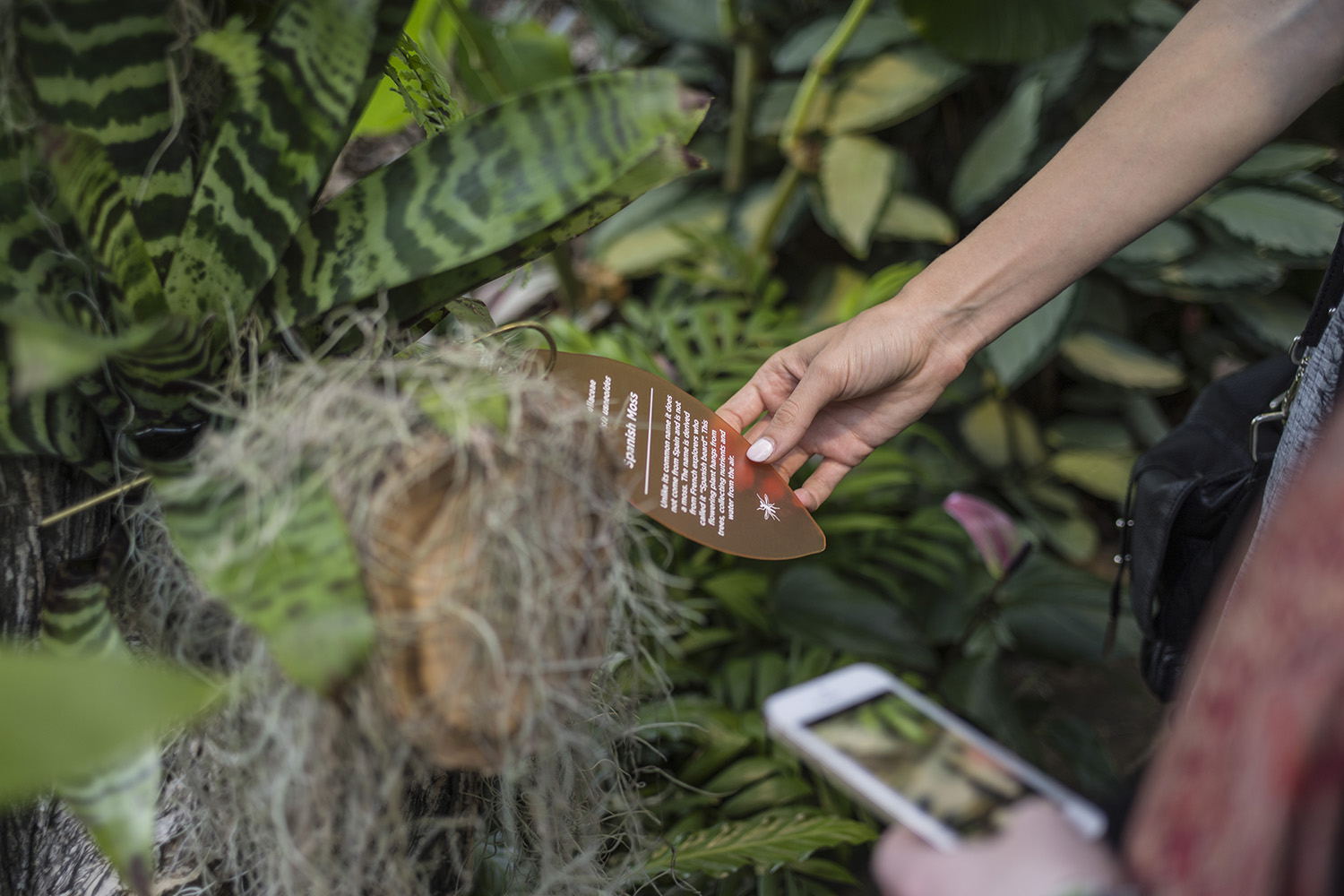 FRD designed a truly hands-on experience, with visitors encouraged to immerse themselves by feeling and smelling organic materials.