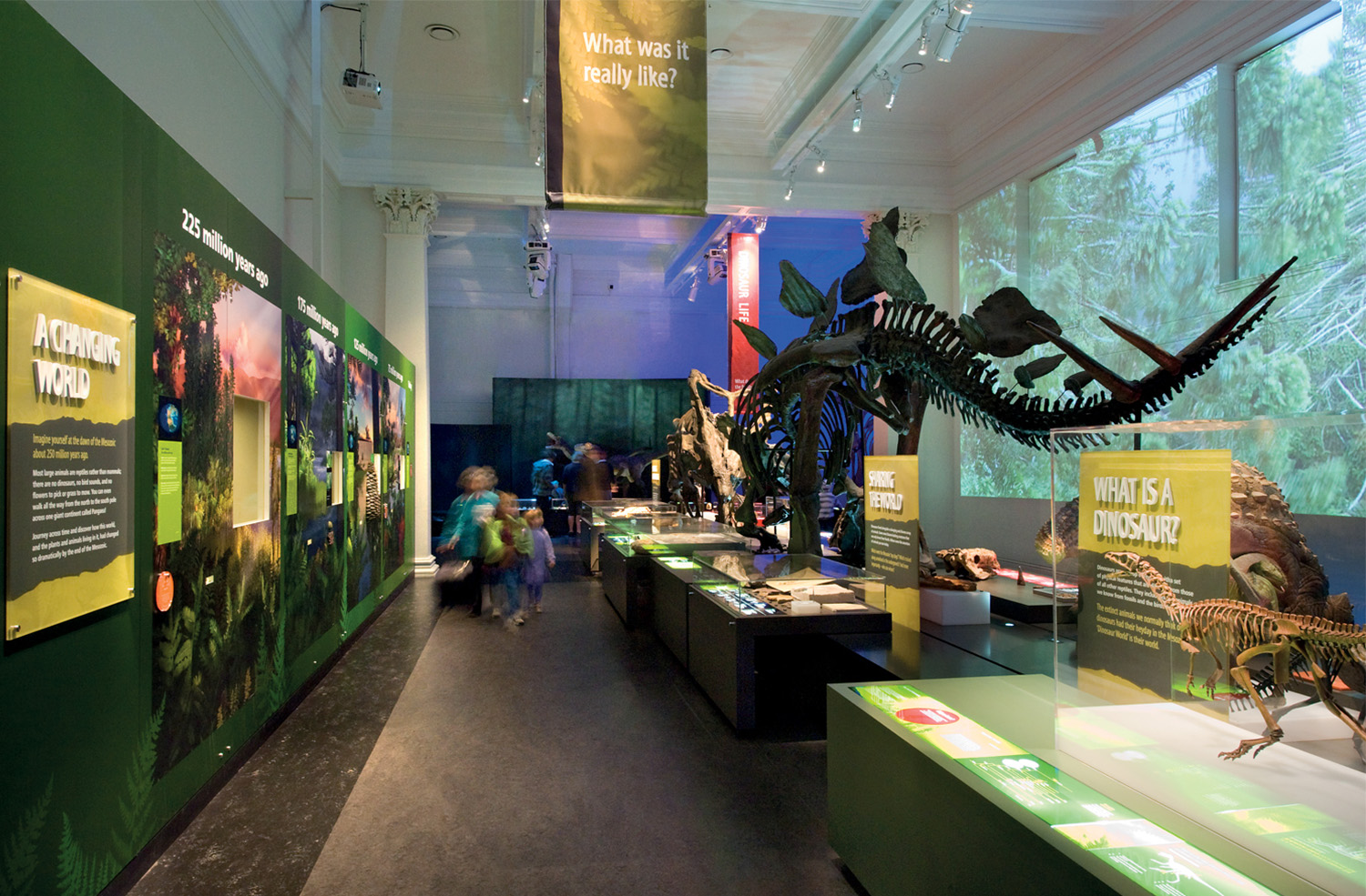 Large-scale video and computer-generated scenarios are projected upon the heritage walls, evoking the landscape upon which these creatures died and inducing an authentic context for these huge artefacts.
