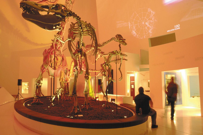 FRD-Dinosaurs-in-Time-2.jpg