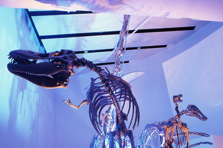 FRD-Dinosaurs-in-Time-1.jpg