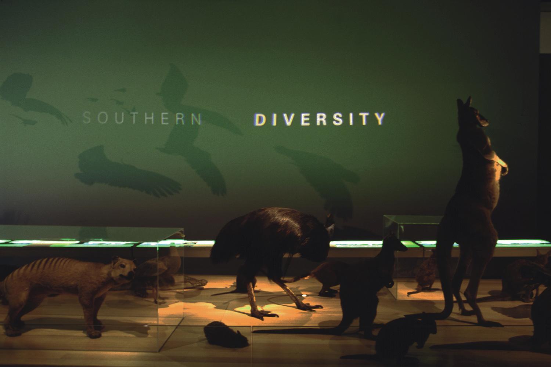 FRD-Southern-Diversity-1.jpg
