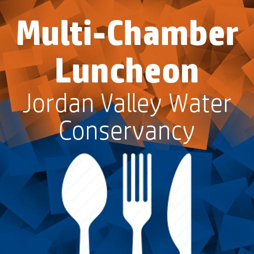MultiChamber Lunch.JPG