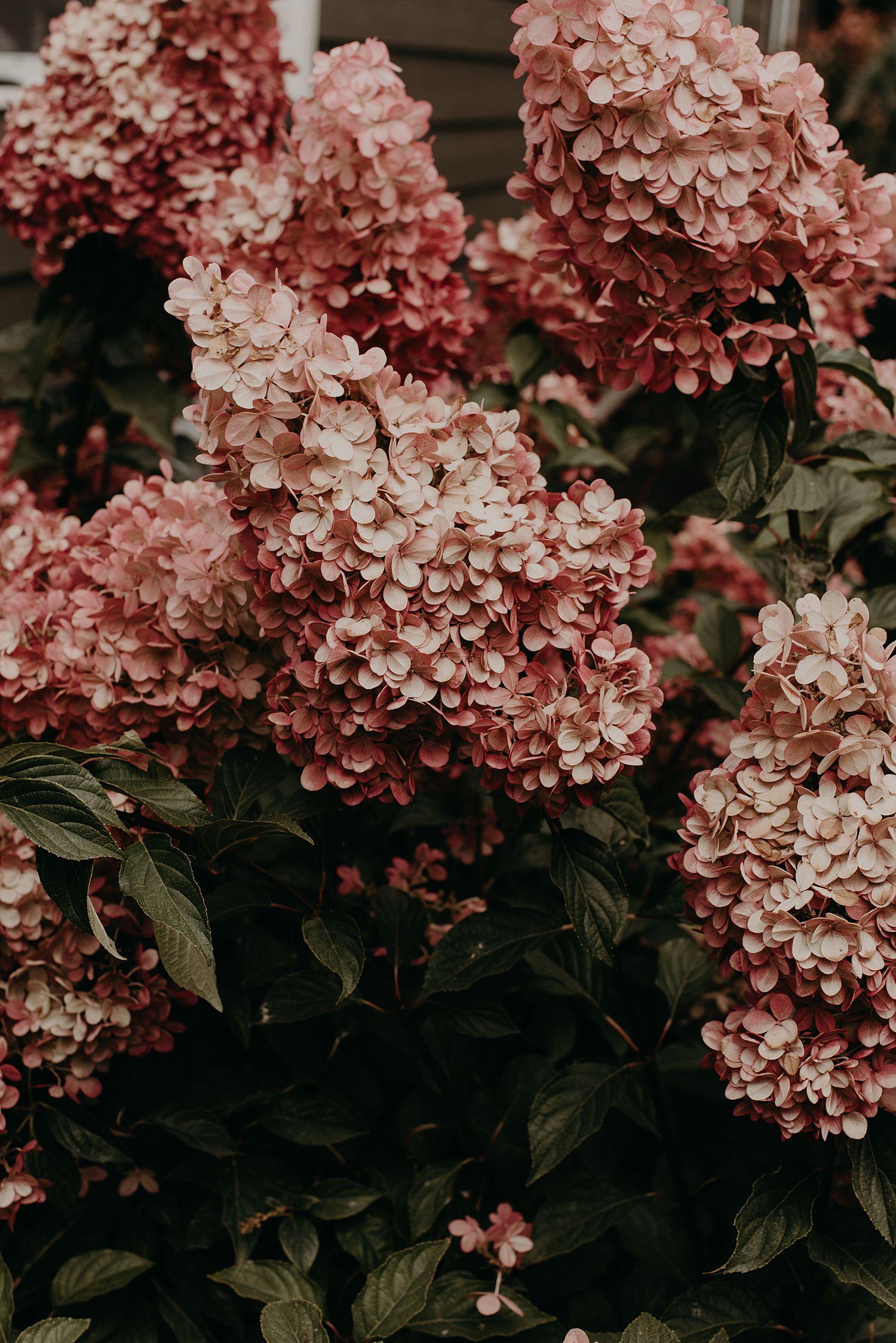 Brenna-Ben-Oregon-Elopment_0668.jpg