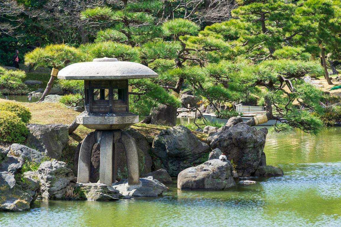 Kiyosumi teien garden lantern tree tokyo japan