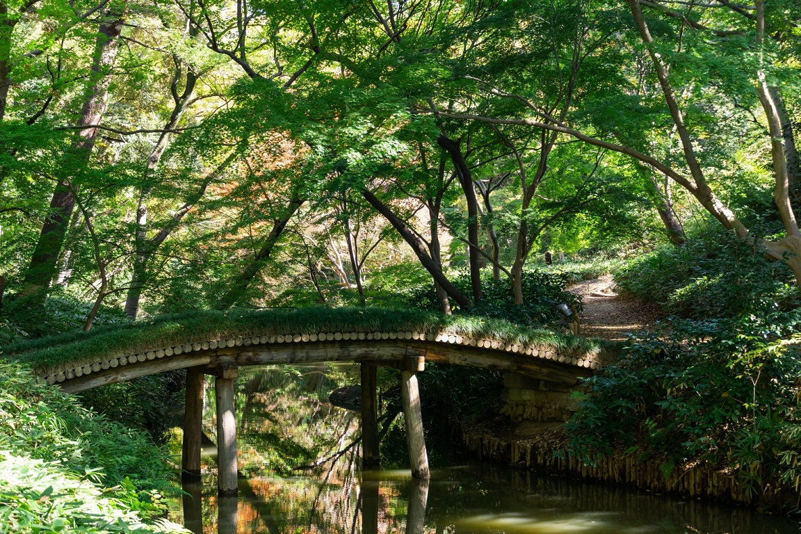 rikugien garden bridge stream tokyo japan