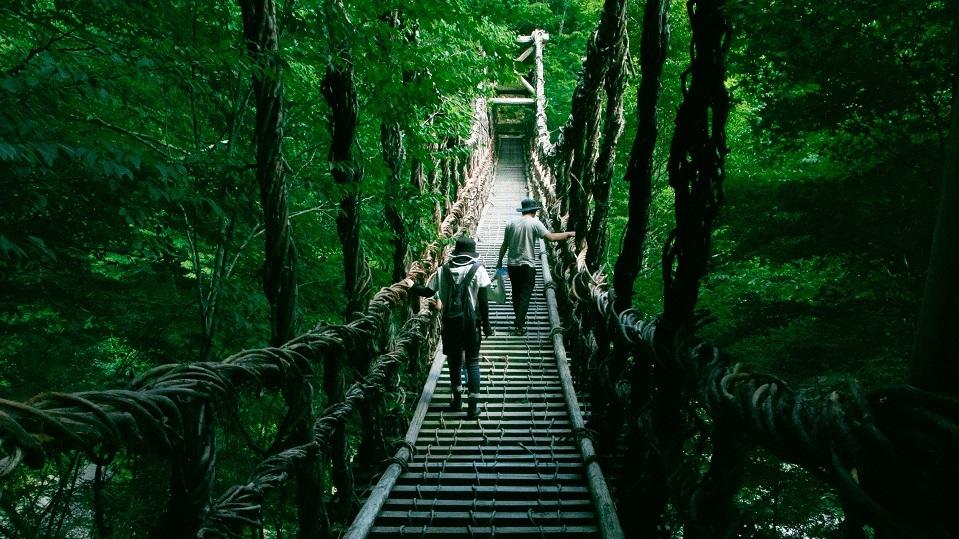 tokushima-Suspension-Bridge