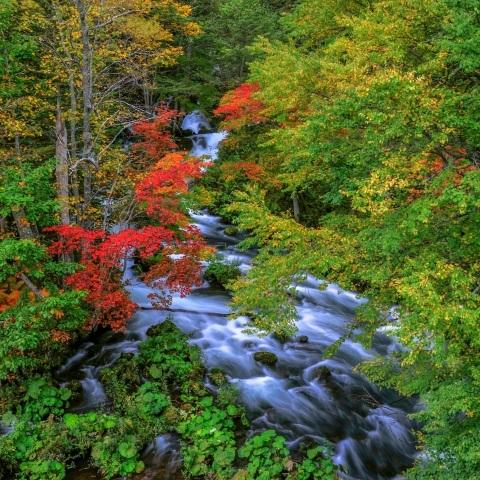 akan national park hokkaido japan