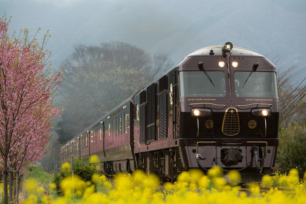 Seven Stars train Kyushu flowers.jpg