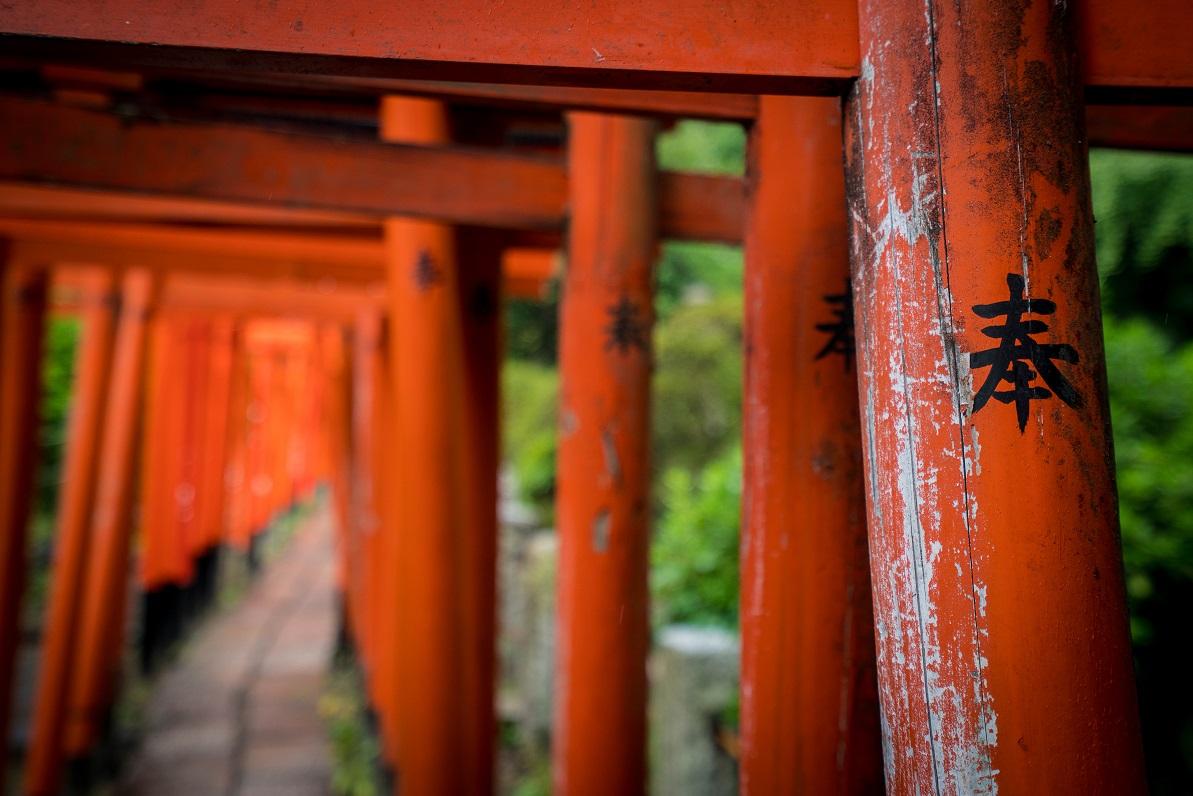 nezu shrine tokyo torii gates.jpg
