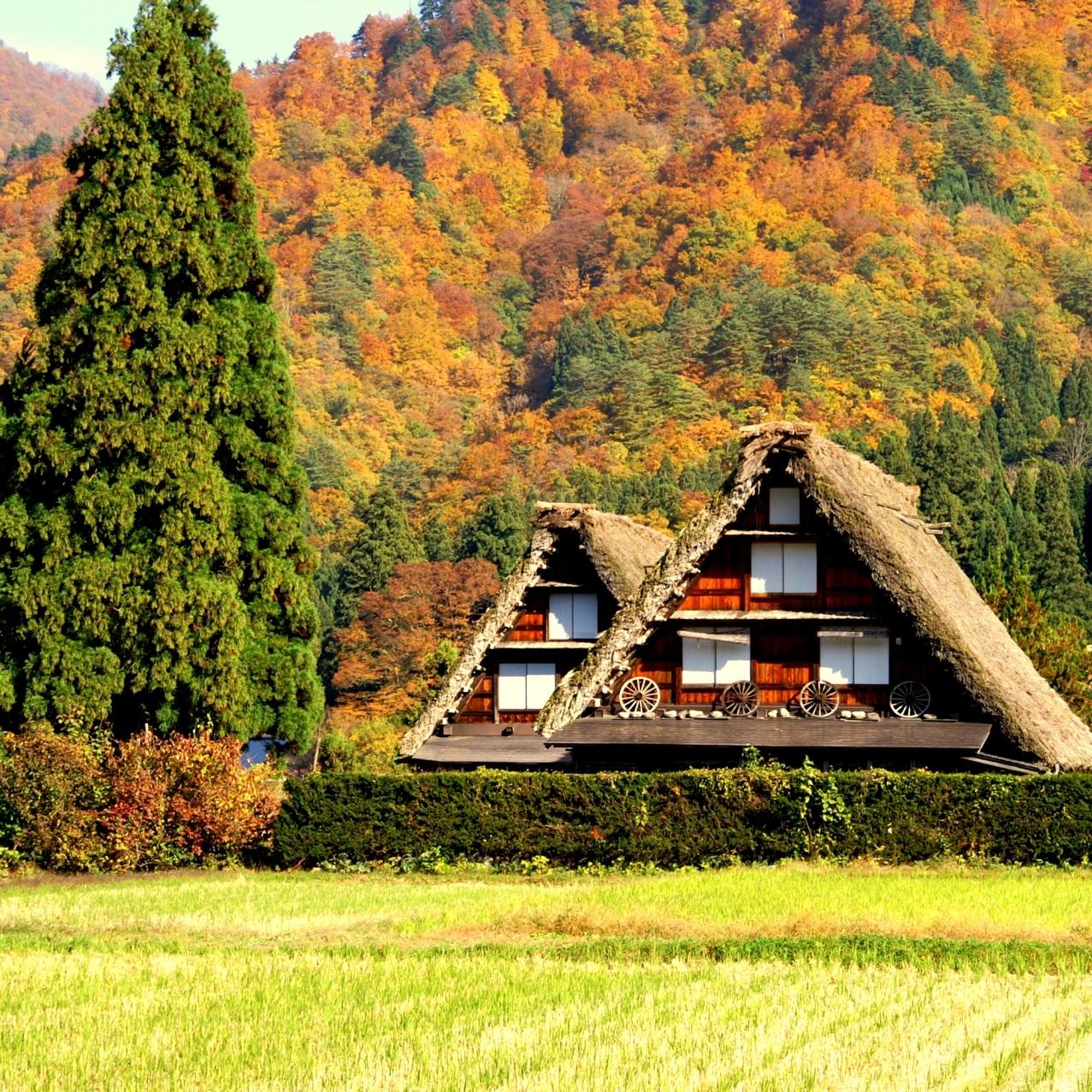 japan+autumn+takayama.jpg