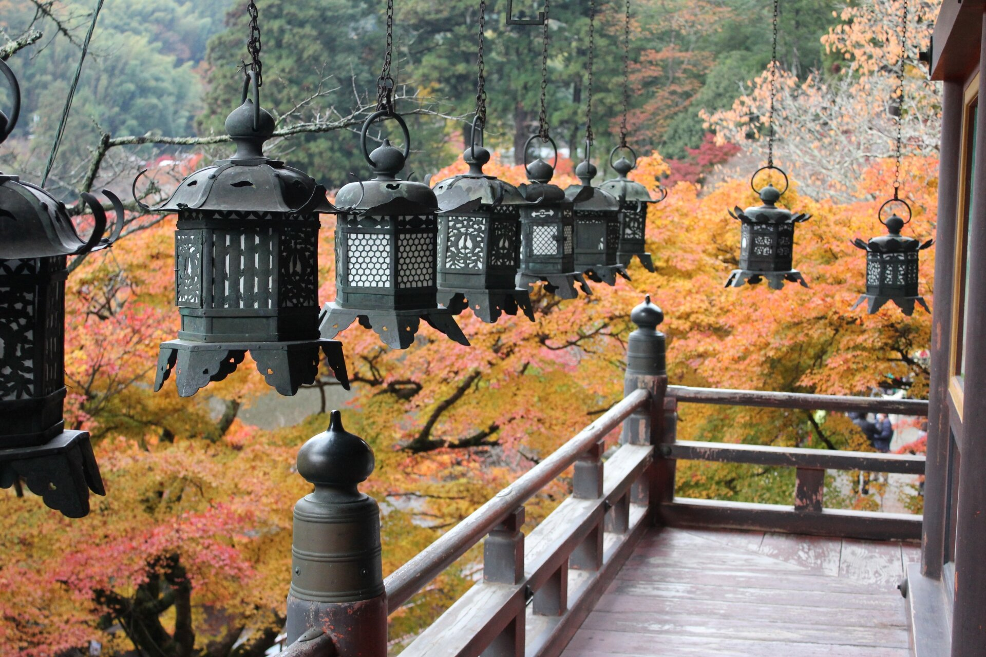 japan fall lanterns leaves.jpg