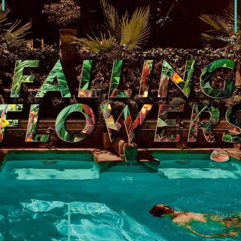 Erik Deutsch's Falling Flowers