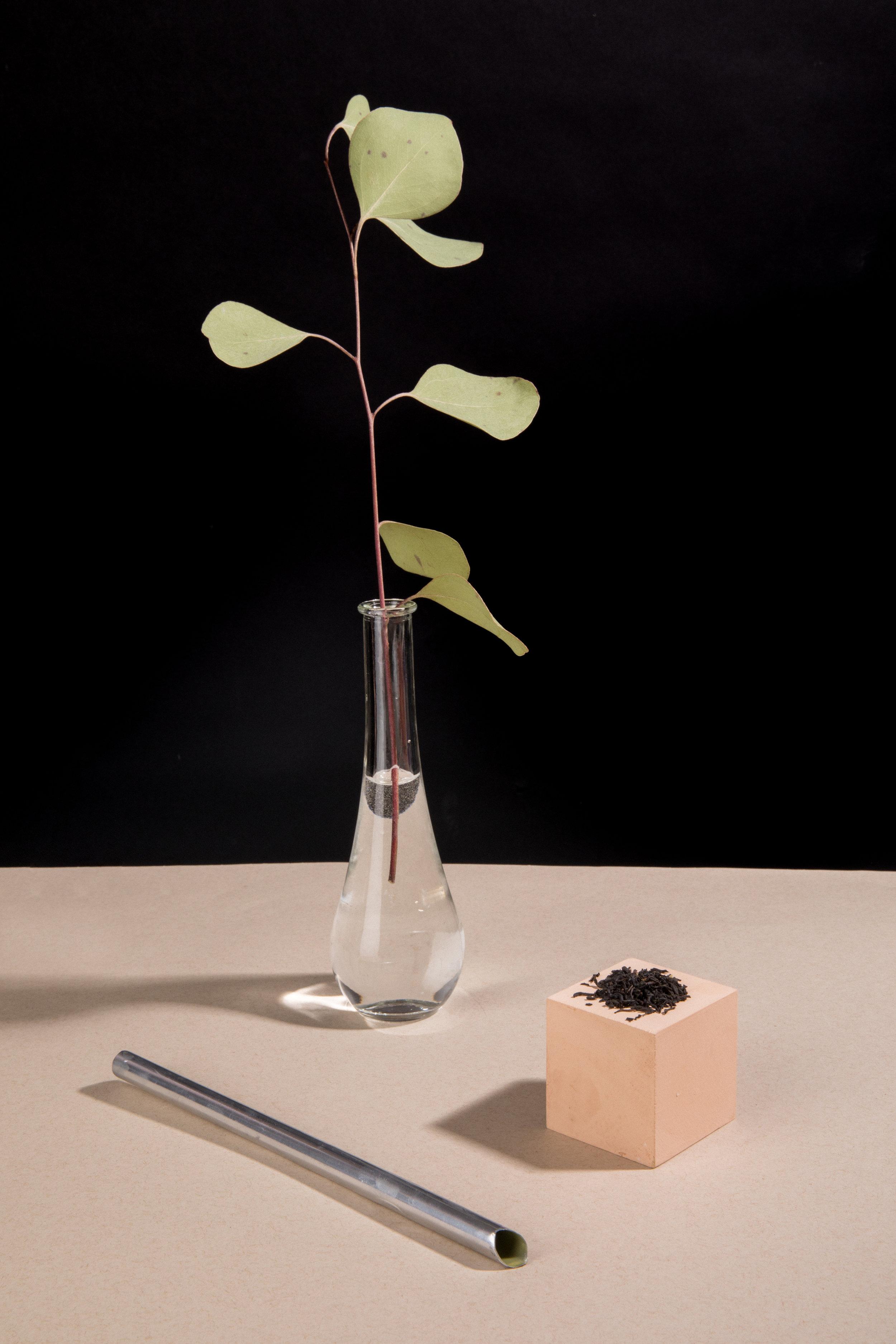 Tea Leaves - Tea Company - Styled by Judy Zheng