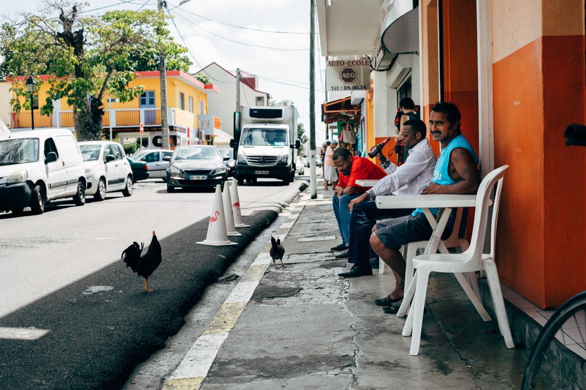 Café poules
