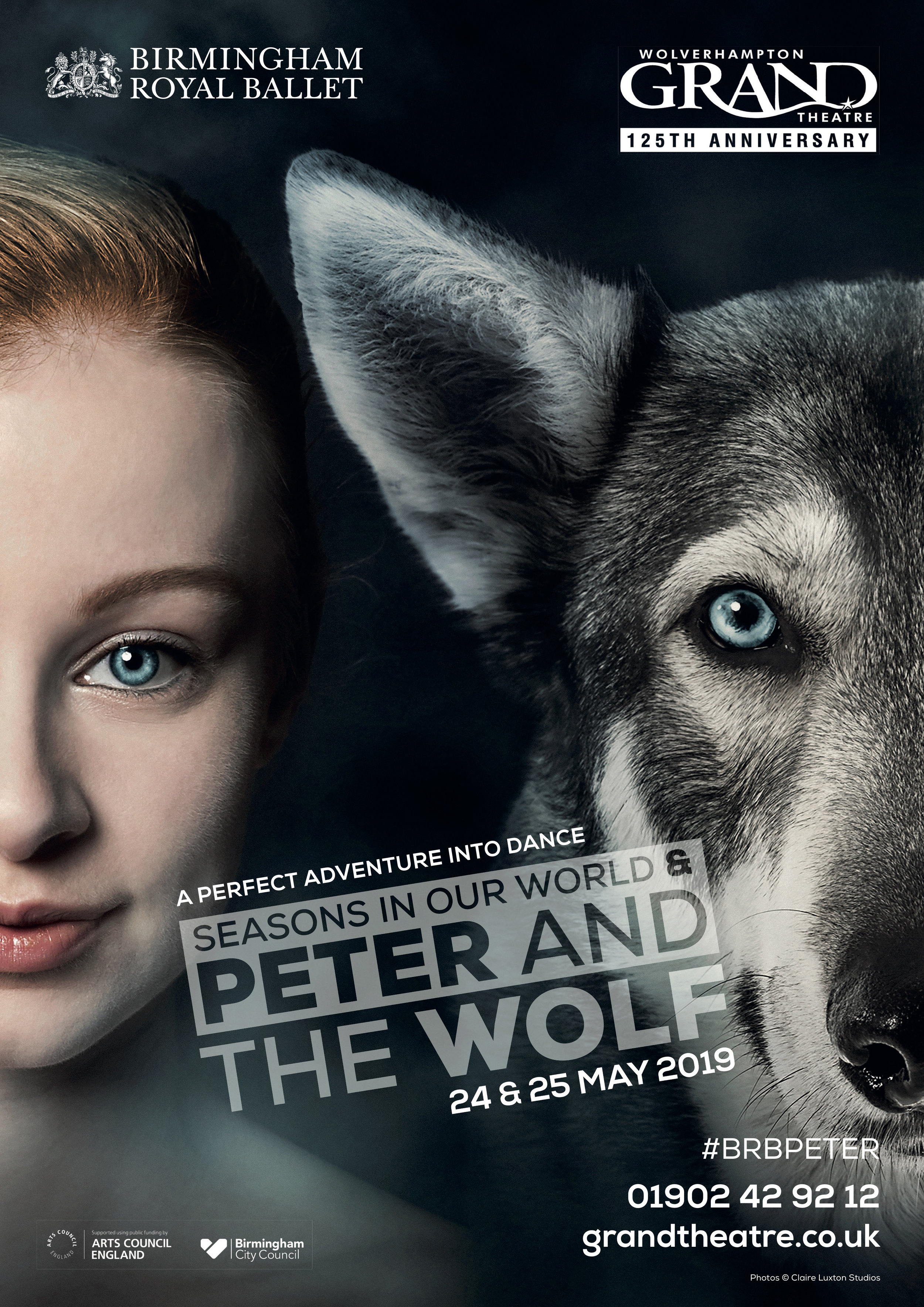 Wolverhampton Peter and the Wolf 2019 A3 poster.jpg
