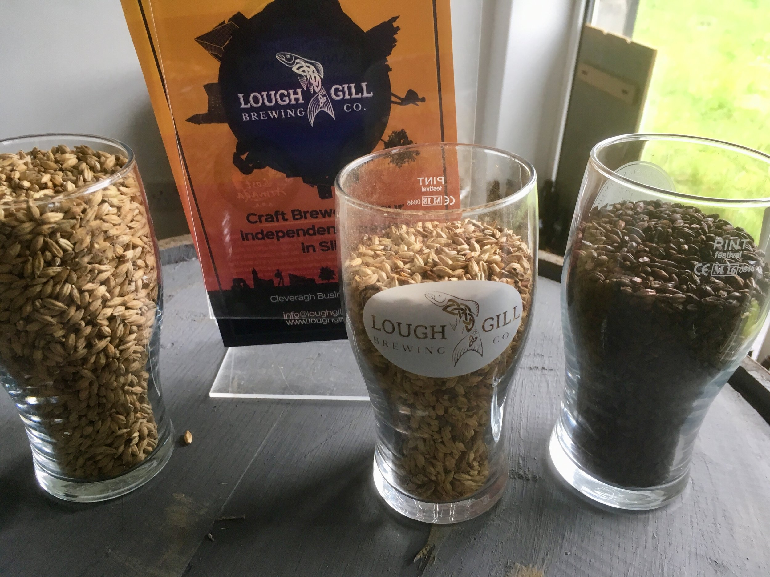 beer grains.jpg