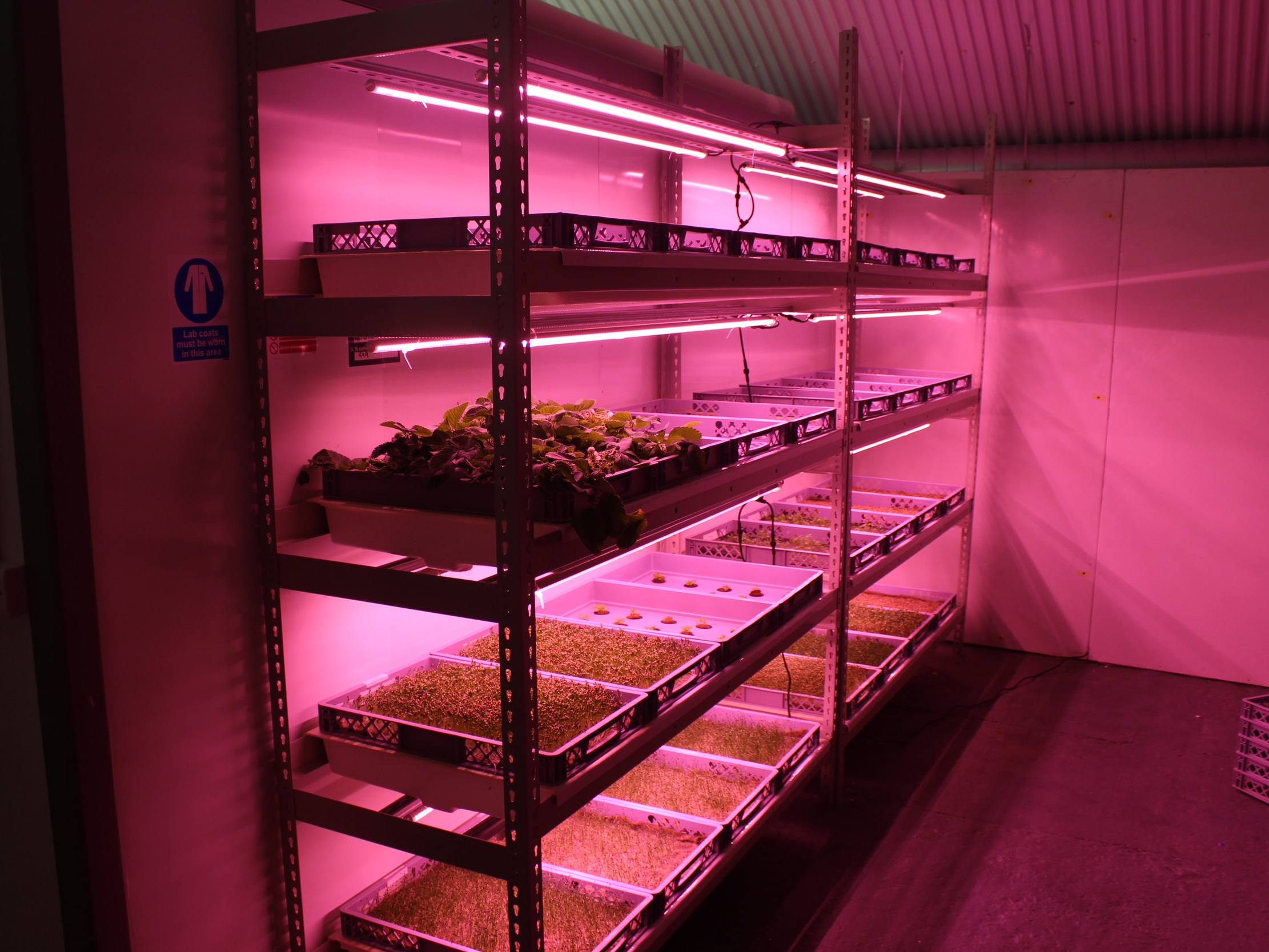 GROW STACK 4 LAYER - From 24m²
