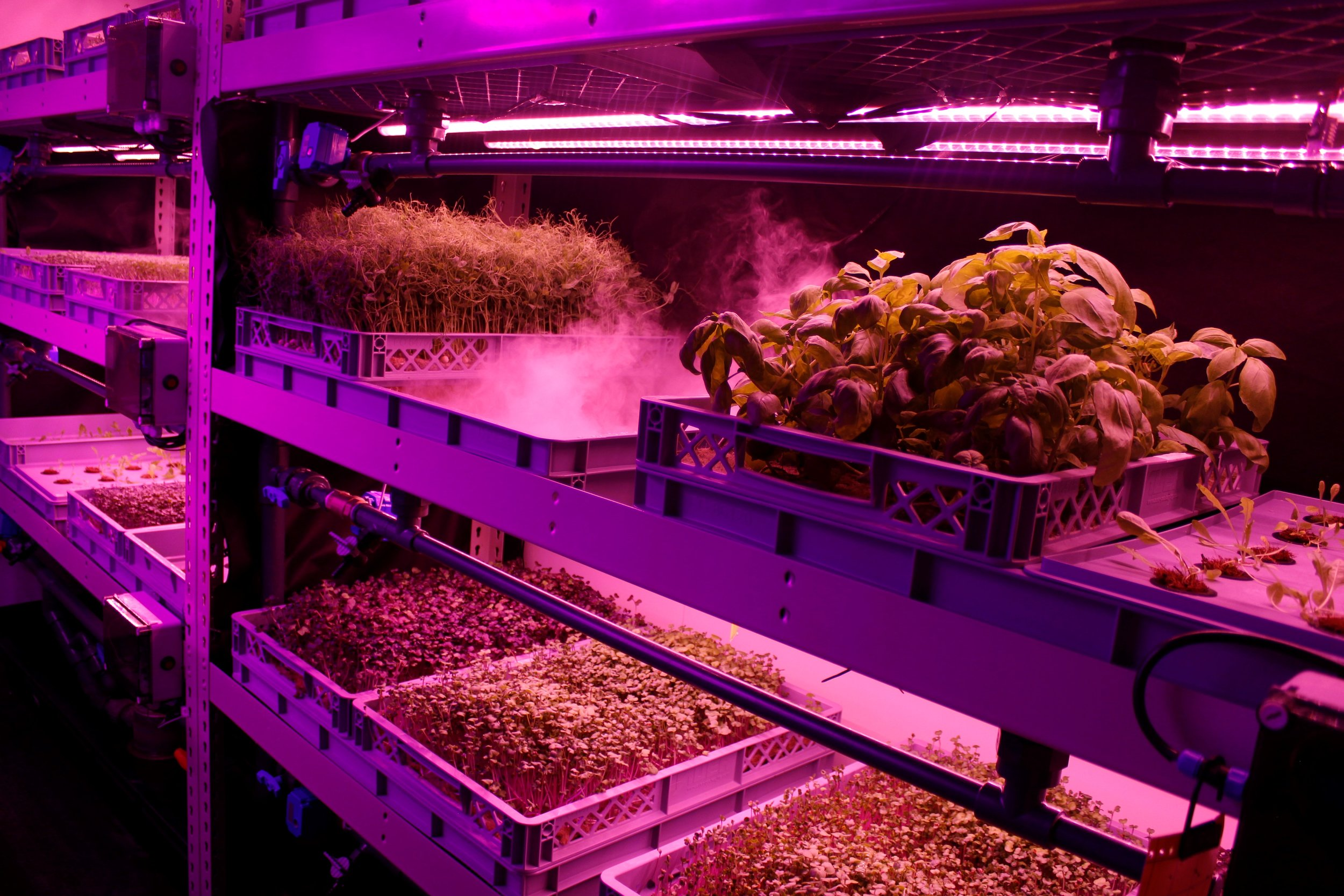 Modular aeroponic farm -