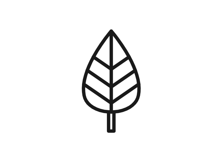 work_leaf_grow_kethelz.png