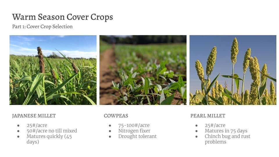 No Till & Cover Cropping Workshop(8).jpg