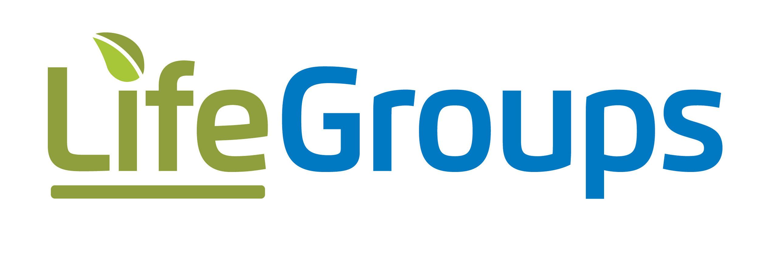 Life Groups Large.jpg