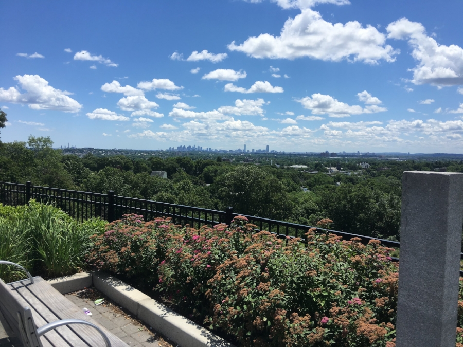 Symmes Hill, Arlington, MA