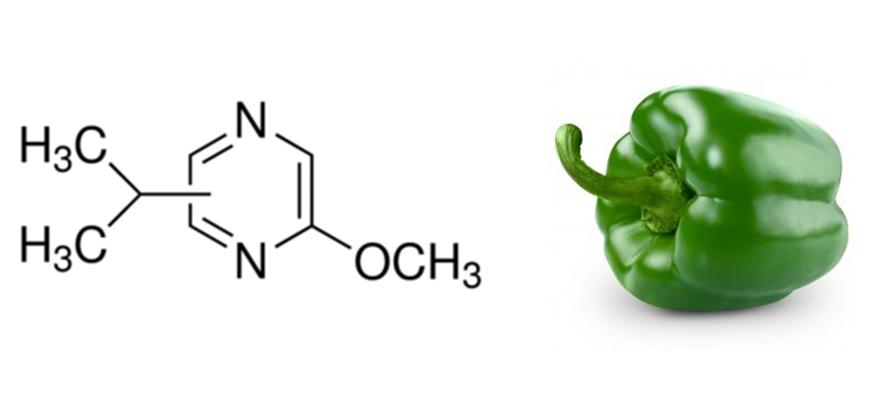 bell pepper molecule.png